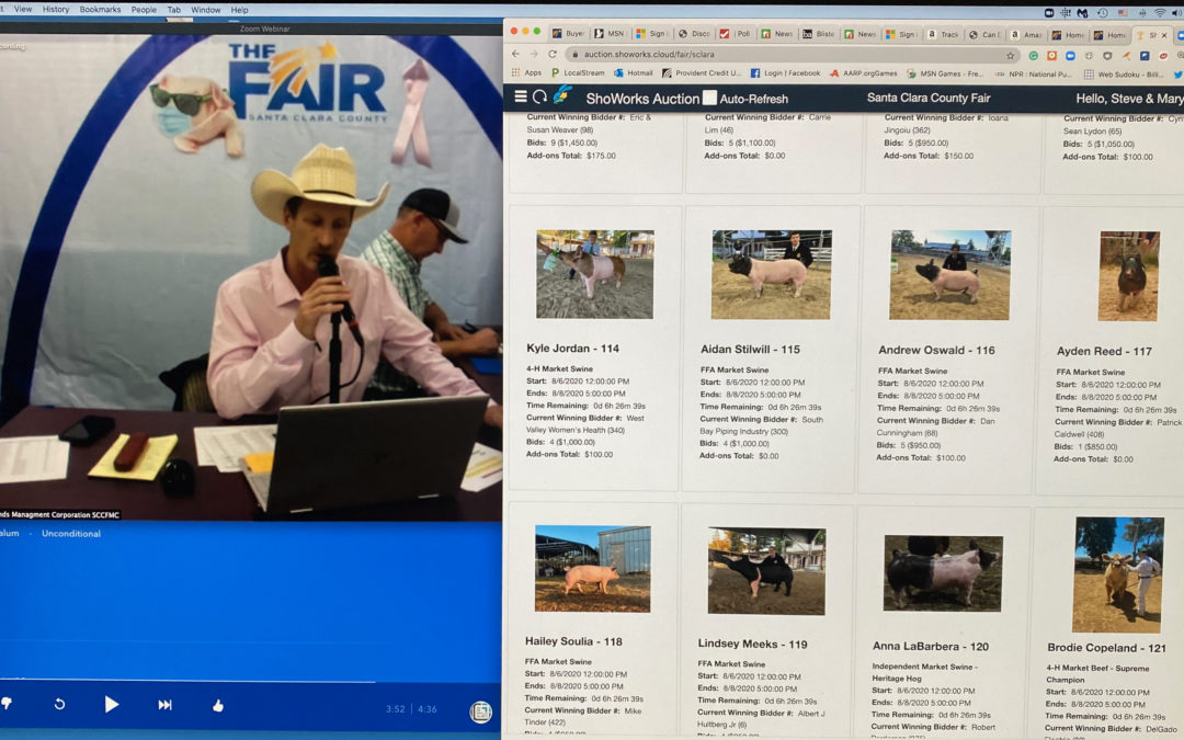 2020 Virtual Fair – Huge Success